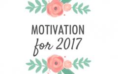 Motivation for 2017