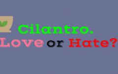 Cilantro vs People