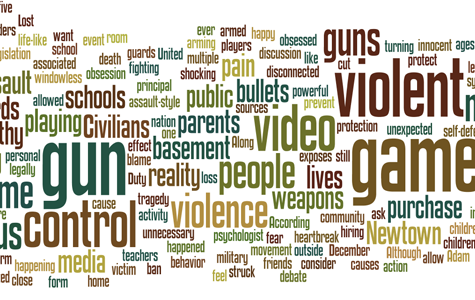 What can we learn from Newtown shooting?