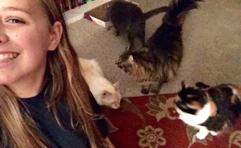 """""""All of my cats are so unique and have different personalities."""" -Haley Schumann"""