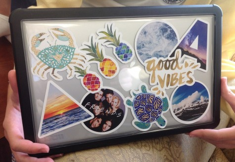 11th grader Audrey Dunn's laptop shows a theme of nature