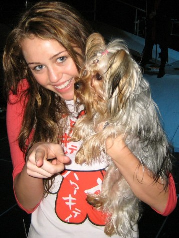 Miley Cyrus in 2007 showing her love for animals with her dog!