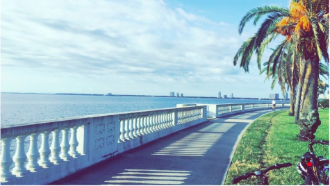 Bayshore offers a beautiful view that can be enjoyed during a bike or run.