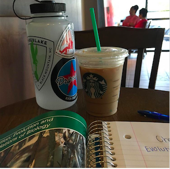Starbucks is a great place to go to after school to do your homework and enjoy a drink. Photo Credits: Morgan Graff (used with permission)