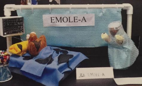 "Senior, Chloe Paman, won Best Mole in Academy's 2014 annual ""Mole Day"" after basing her project on the Ebola outbreaks, entitling it ""Emole-a"". Photo Credit: Shannon Flaharty"