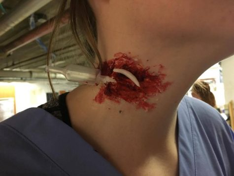 Senior Grace Neal shows off her gory makeup thanks to Traud, featuring a syringe in Neal's neck. Photo Credit: Alex Smith/Achona Online