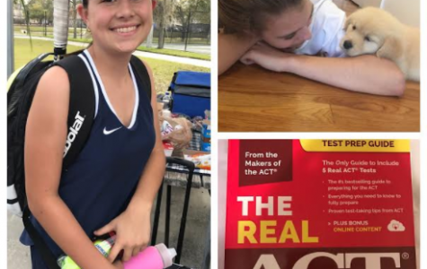 Things Academy Girls Did in February