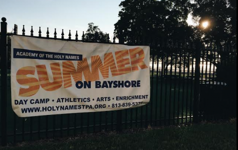 Reasons to Volunteer at Summer on Bayshore