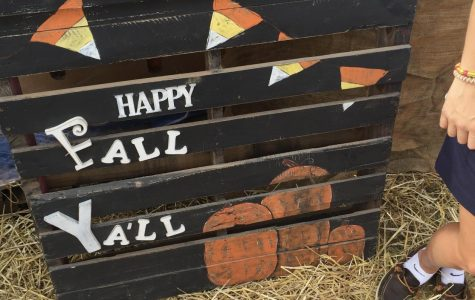 Hyde Park Celebrates Start of Fall With Festival