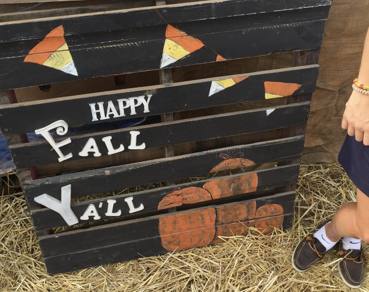 The Fall Festival brought visitors of all ages to Hyde Park to celebrate together. Photo credit: Callie Mellon/ Achona Online