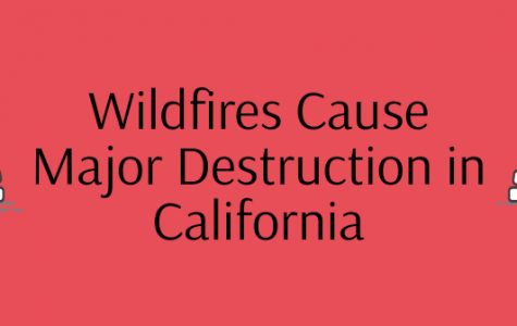 Wildfires Cause Major Destruction in California