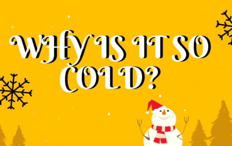 Polar Vortex Affects US Temperatures
