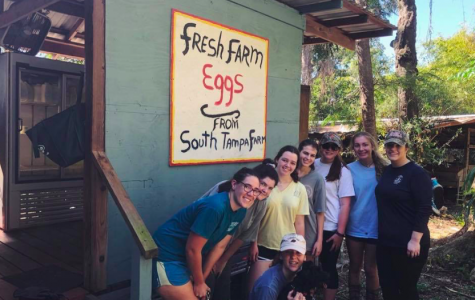 Appalachia Missionaries Serve at South Tampa Farm