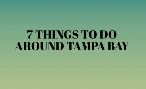 7 Things To Do Around Tampa Bay