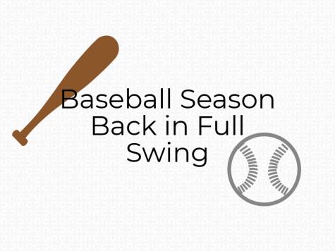 Baseball Season Back in Full Swing