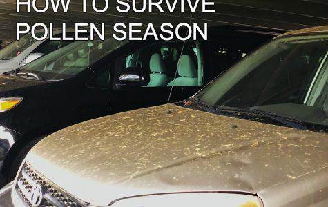 How to Survive Pollen Season