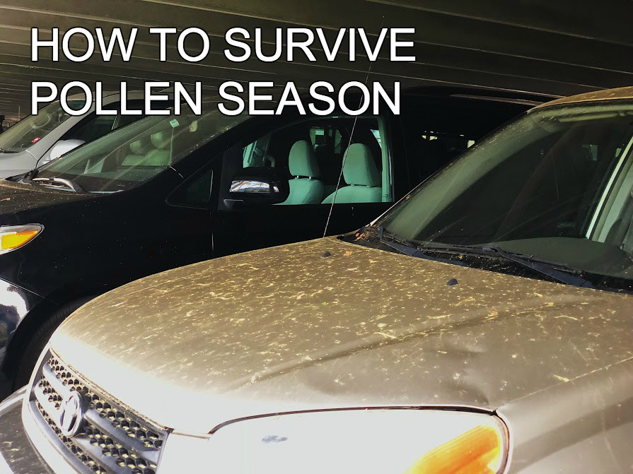 The+pollen+count+has+been+noticeably+higher+this+year+