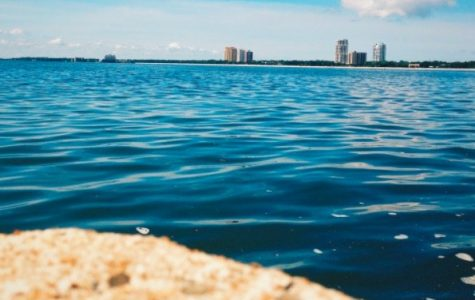 Tampa Bay Named Best City to Live in Florida