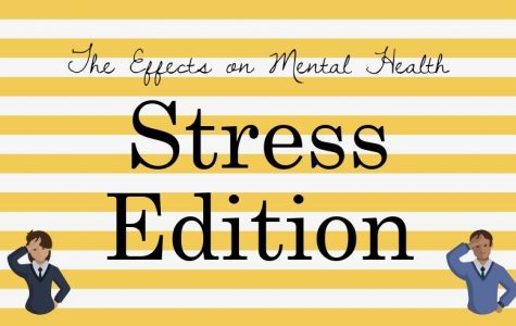 The Effects of Stress on Mental Health