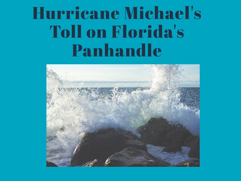 Hurricane+Michael+caused+more+than+4.5+billion+dollars+in+damage.+