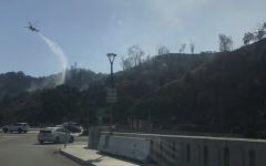 Destruction Caused by the California Wildfires