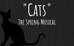 "An Update on ""Cats"""