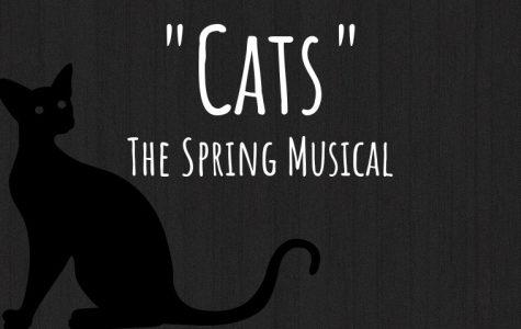 "An Update on ""Cats"""